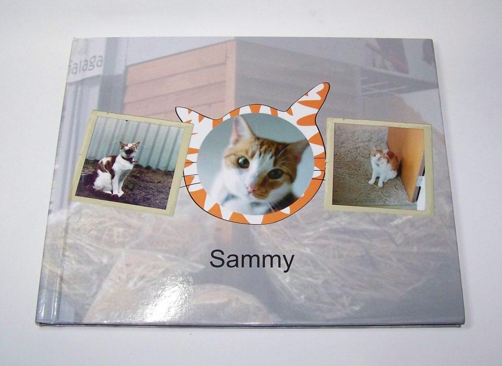 Photo book Services